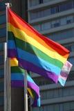 Stolzflagge Lizenzfreie Stockfotografie