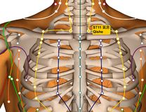 Acupuncture Point ST11 Qishe, Stomach Meridian royalty free stock image