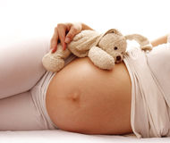 Stomach pregnant woman on white background Royalty Free Stock Images