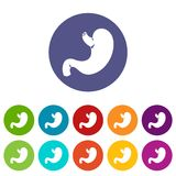 Stomach set icons Stock Photography