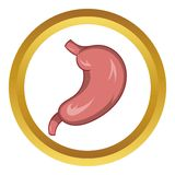 Stomach vector icon. In golden circle, cartoon style isolated on white background stock illustration