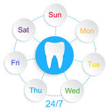 Stomatologia del dente infographic Illustrazione Vettoriale