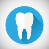 Stomatologia ed icona dentaria del dente di simbolo di trattamento Fotografia Stock Libera da Diritti