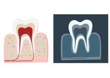Stomatologicznej opieki płaskie dekoracyjne ikony ustawiać z stomatologist wytłaczają wzory Stomatologist Fotografia Royalty Free