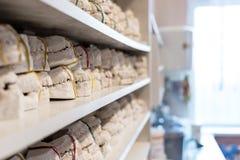 Stomatologiczni gipsowi modele szczęki w dentysty biurze fotografia stock