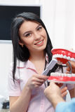 Stomatology and health care concept Stock Photos