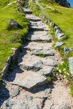 Stome flagged steps on path. Stone slabs making stairs on a path surrounded by wild grass Stock Photography