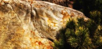 Stone και ερυθρελάτες Στοκ φωτογραφία με δικαίωμα ελεύθερης χρήσης