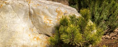 Stone και ερυθρελάτες Στοκ εικόνα με δικαίωμα ελεύθερης χρήσης