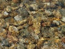 Stone στη θάλασσα Στοκ φωτογραφία με δικαίωμα ελεύθερης χρήσης
