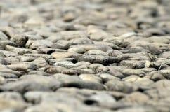 Stone στη φύση Στοκ εικόνες με δικαίωμα ελεύθερης χρήσης