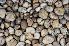 Stone στον ποταμό στοκ φωτογραφία με δικαίωμα ελεύθερης χρήσης