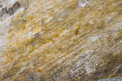 Stone. High-quality stone brown background Stock Images
