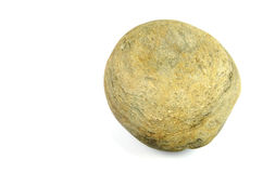 Stone. A photograph of a stone against a white background Stock Image