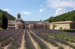 Stone abbey with lavender field in the backyard. French abbey made of stone and a fiel of lavender royalty free stock images