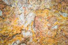 Stone abstract background with a pattern caused.  royalty free stock photos