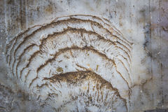 Stone abstract background with a pattern caused by water erosion.  royalty free stock photos