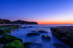 Stone with algae on Narrabeen Beach. At sunrise in Sydney Australia Stock Images