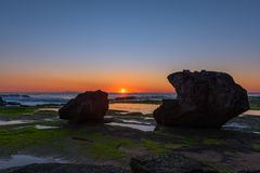 Stone with algae on Narrabeen Beach. At sunrise in Sydney Australia Stock Photos