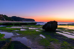 Stone with algae on Narrabeen Beach. At sunrise in Sydney Australia Stock Photo