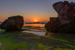 Stone with algae on Narrabeen Beach. At sunrise in Sydney Australia Royalty Free Stock Image