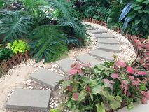 Stone alley arranged in a small garden Stock Image