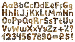 Stone alphabet Royalty Free Stock Photos