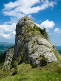 Stone alpine tower in mountains royalty free stock image