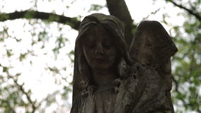 Stone angel on the cemetery stock video