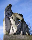 Stone Angel in a graveyard. Stone sculpture of an Angel in a graveyard stock images