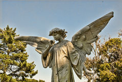 Stone Angel Man. A young male stone angel spreads his wings between two trees Royalty Free Stock Images