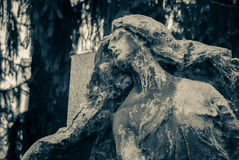 The stone angel Royalty Free Stock Image