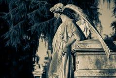 The stone angel Stock Photo