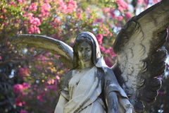 Stone Angel. This was taken in Terrell Texas Royalty Free Stock Photo