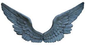 Stone Angel Wing Cluster Royalty Free Stock Images