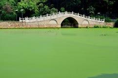 Stone arch bridge. With green pond Stock Photos