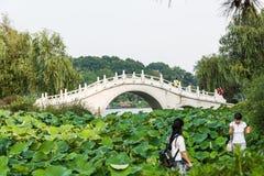 The stone arch bridge Stock Photos