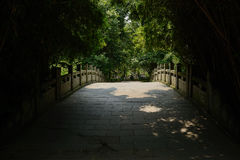 Stone arch bridge in shade of bamboo at sunny summer noon. Stone arch bridge in the shade of bamboo at sunny summer noon,Chengdu,China Royalty Free Stock Photos