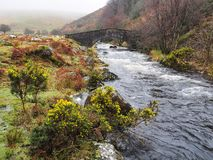 Stone arch footbridge over the West Okement River, Dartmoor National Park, Devon, UK. Stone arch footbridge over the fast flowing West Okement River with yellow stock photography