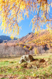 stone and an autumnal panorama Royalty Free Stock Images