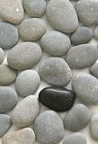 Stone background. Background of gray stones, with a black stone between Stock Photo