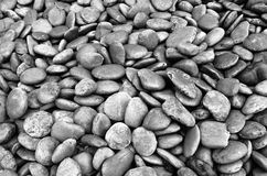 Stone background in the backyard Stock Image