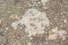 Stone background Royalty Free Stock Photo