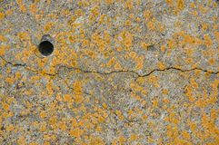 Stone background, covered with yellow moss, with a crack and a hole Royalty Free Stock Photos