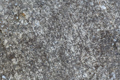 Stone background gray stucco, texture Royalty Free Stock Images