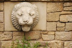 Stone background with lion head Royalty Free Stock Photography