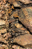Stone background. Background from rock and stone Stock Photography