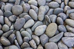 Stone Background1 Stock Image