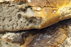 Stone-baked crusty breads in focus Stock Photos