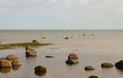 Stone Baltic sea. Stock Images